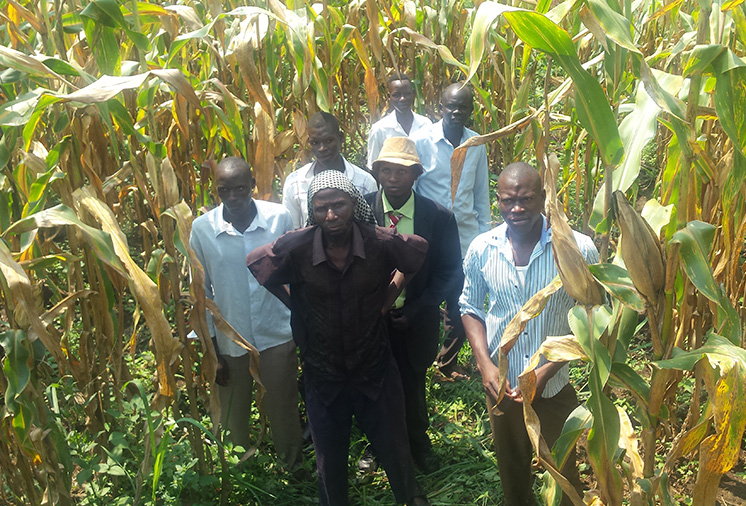 Ugandan Youth Farmers