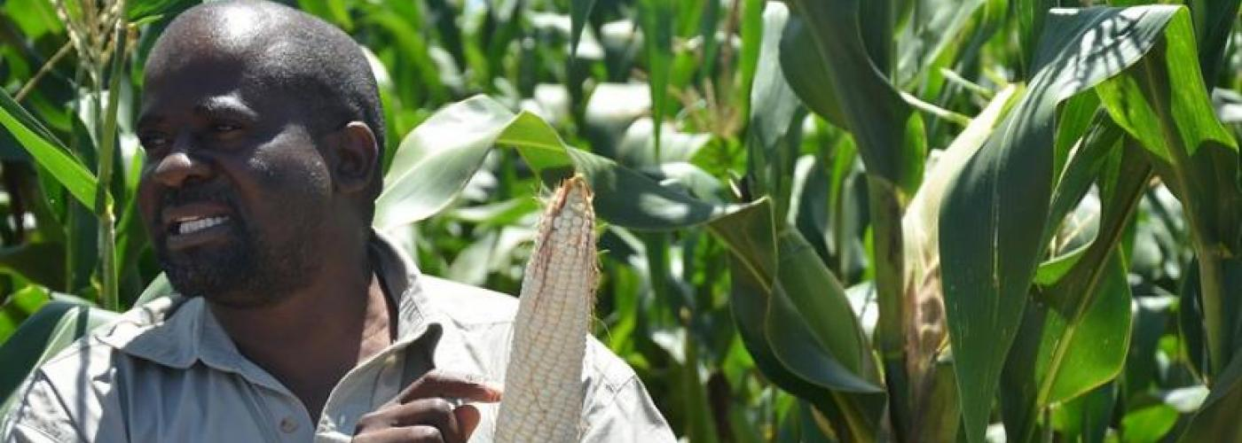 Photo: A representative from DuPont Pioneer talks about the particular variety of maize that Pioneer recommends for this agro-ecological zone at a demonstration plot in Zimbabwe.