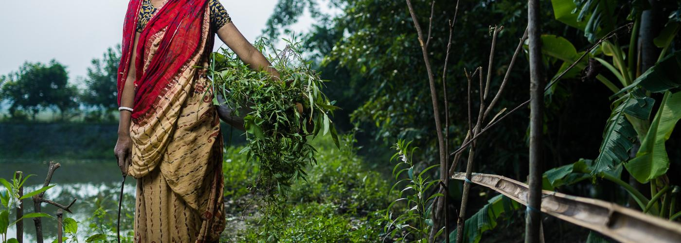 Photo: A rice farmer holds a basket of crops in Bangladesh. Credit: Morgana Wingard/Feed the Future.
