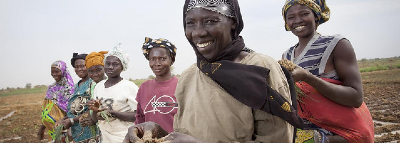 Photo: Women in the department of Di, Burkina Faso, transplant onion seedlings. Photo by Jake Lyell.