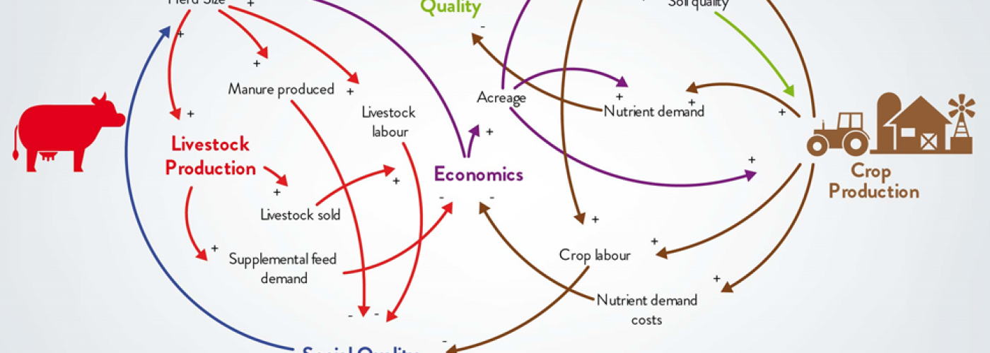 Photo: Example of a Causal Loop Diagram from SystemsThinkingEngineering.com