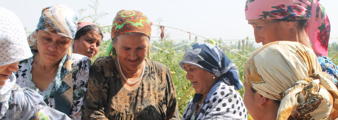 A group of women from Khatlon province, Tajikistan excitedly admire tomatoes they just collected from their greenhouses.