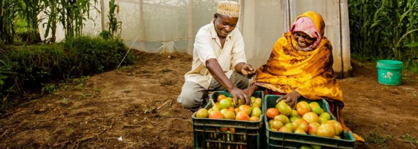 Photo of two produce farmers.