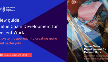 ILO launches the new VCD for Decent Work Guide