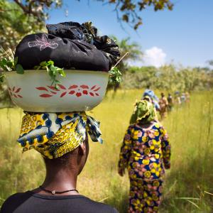 Photo: Two women walking through field in Guinea
