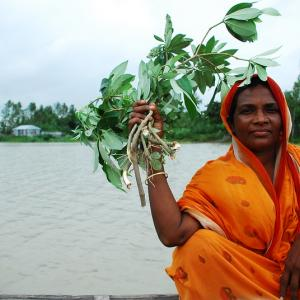 Photo: Woman in Bangladesh sitting by river, holding plant