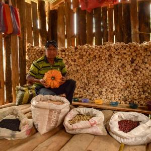 A man sits behind bags of beans and seeds holding a pumpkin.