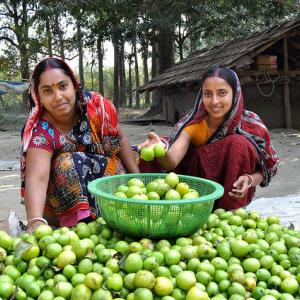 Two Bangladeshi women  looking at camera sorting plum seeds.