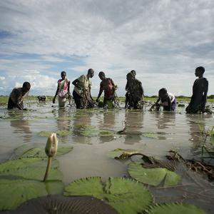 Photo: Group of people standing in body of water in South Sudan