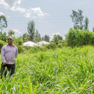 Smallholder farmer standing in field