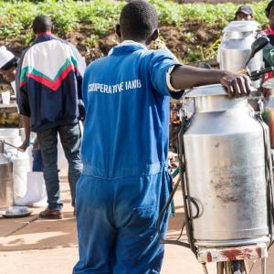 Member of the dairy cooperative IAKIB in Rwanda delivers milk at a collection center