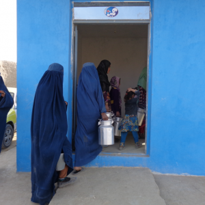 Milk collection center, Northern Afghanistan. ILO 2017.