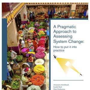 A Pragmatic Approach to Assessing System Change:  How to put it into practice Cover