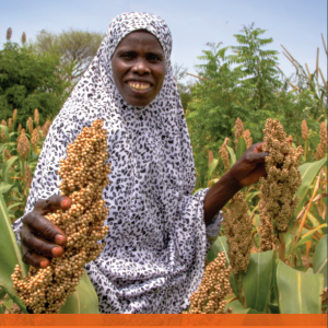 World Vision Village Agent Guide: Strengthening Business Linkages for Smallholder Farmers