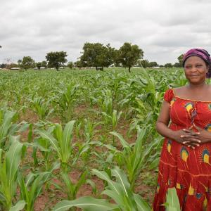 Photo: Madam Laadi Forkinam standing in her 13 acres maize farm in Nakpanduri