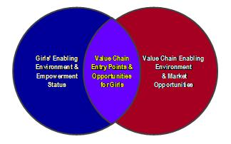 Value Chain Entry Points and Opportunities for Girls Diagram