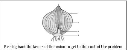 Peeling back the layers of the onion to get to the root of the problem
